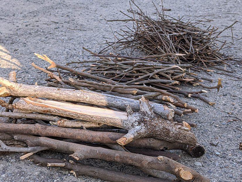 枯れ枝から焚き付けと薪用の枝を作成