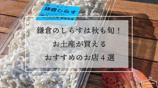 鎌倉のシラスは秋も旬!お土産が買えるおすすめのお店4選