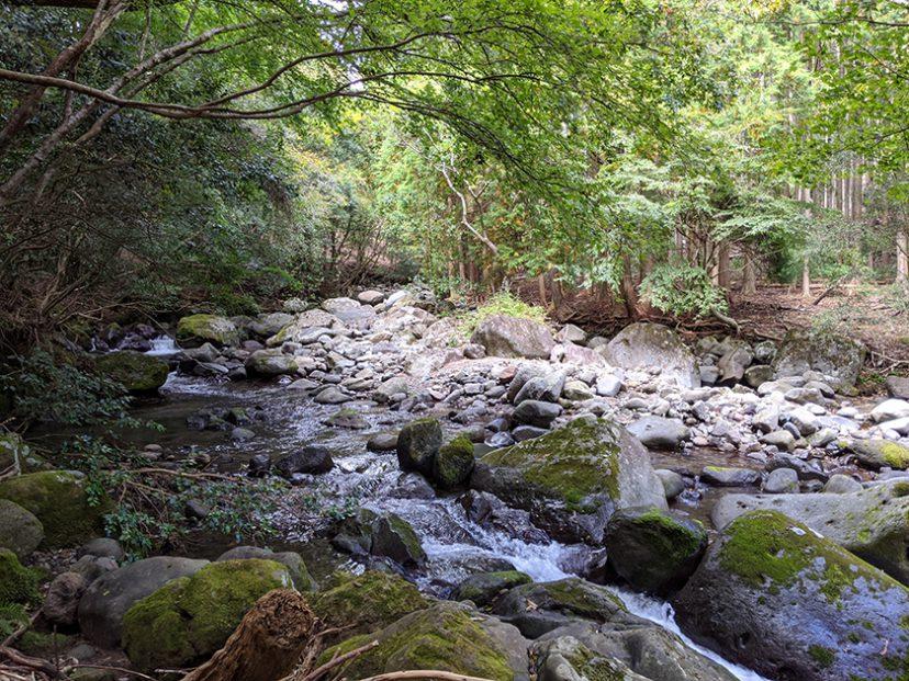 河津オートキャンプ場 川の清流